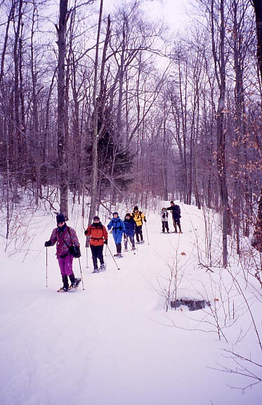 Adirondacks snowshoe group